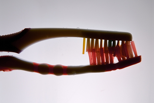 toothbrushes intertwined